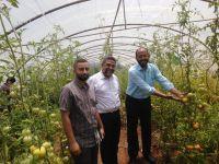 جولة رئيس اتحاد بلديات جبل عامل على مشروع زراعي في بلدة رب ثلاثين